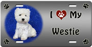 I Love My West Highland White Terrier License Plate