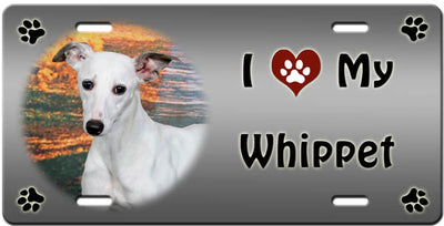 I Love My Whippet License Plate