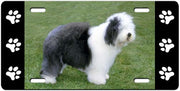 Old English Sheepdog License Plate