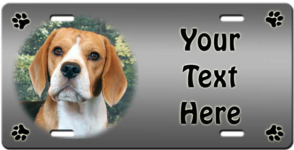 Personalized Beagle License Plate