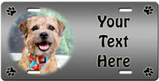 Personalized Border Terrier License Plate