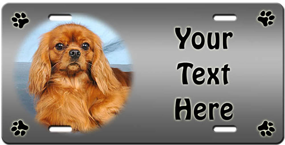 Personalized Cavalier King Charles Spaniel License Plate