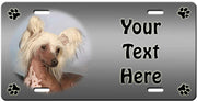 Personalized Chinese Crested - Hairless License Plate