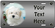 Personalized Coton du Tulear License Plate