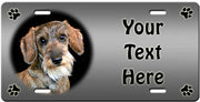 Personalized Dachshund - Wirehaired License Plate