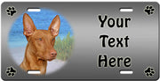 Personalized Pharaoh Hound License Plate