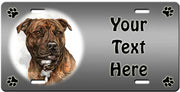 Personalized Staffordshire Bull Terrier License Plate