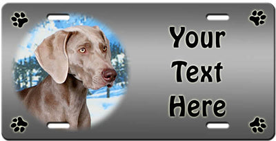 Personalized Weimaraner License Plate