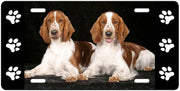 Welsh Springer Spaniel License Plate