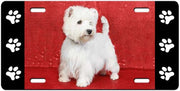 West Highland White Terrier License Plate