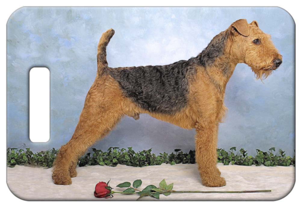 Airedale Terrier Luggage Tag