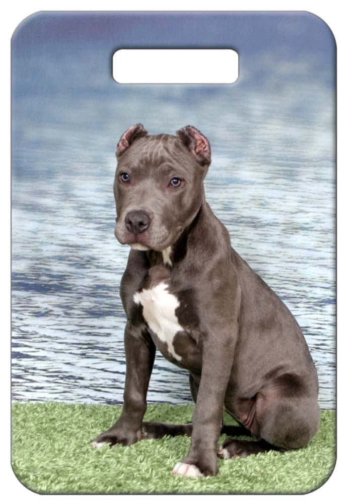 American Staffordshire Pitbull Terrier Luggage Tag