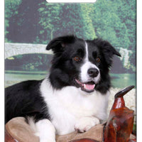 Border Collie Luggage Tag