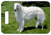 Borzoi Luggage Tag