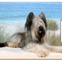 Briard Luggage Tag