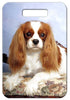 Cavalier King Charles Spaniel Luggage Tag
