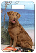 Chesapeake Bay Retriever Luggage Tag