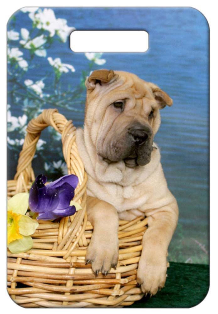 Chinese Shar-Pei Luggage Tag