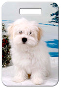 Coton du Tulear Luggage Tag