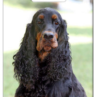 Gordon Setter Luggage Tag