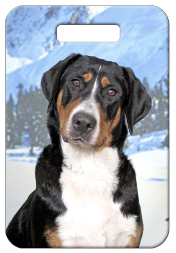 Greater Swiss Mountain Dog Luggage Tag