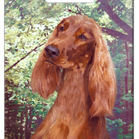 Irish Setter Luggage Tag