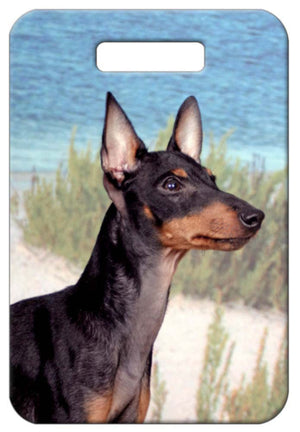 Manchester Terrier Luggage Tag