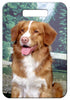 Nova Scotia Duck Toller Luggage Tag