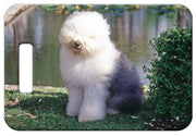 Old English Sheepdog Luggage Tag