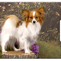 Papillon Luggage Tag