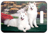 Samoyed Luggage Tag