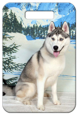 Siberian Husky Luggage Tag
