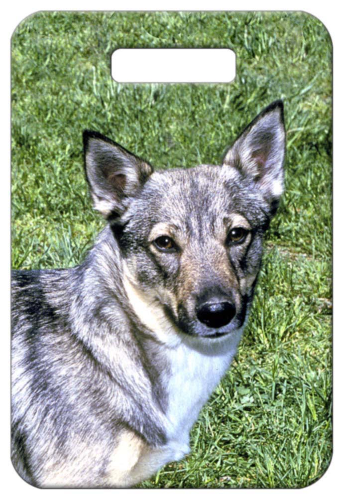 Swedish Vallhund Luggage Tag