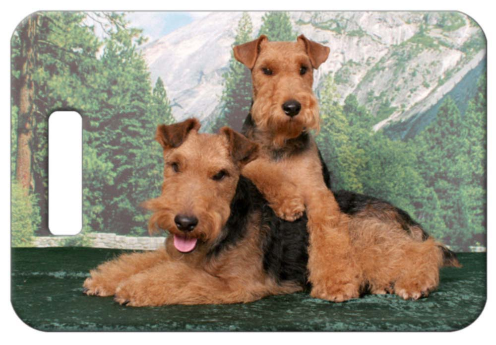 Welsh Terrier Luggage Tag