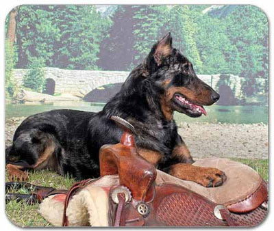Beauceron Mousepad