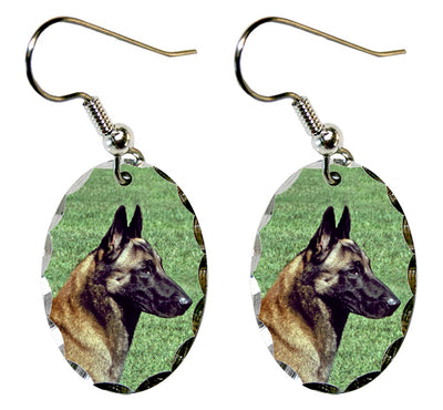 Belgian Malinois Earrings