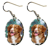 Nova Scotia Duck Toller Earrings