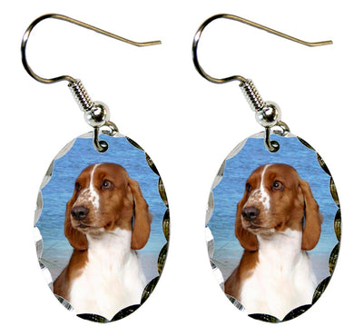 Welsh Springer Spaniel Earrings