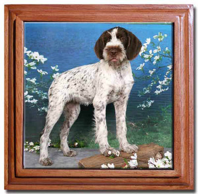 German Wirehair Pointer Tile Trivet