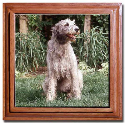 Irish Wolfhound Tile Trivet
