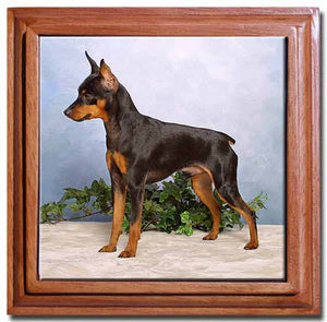 Miniature Pinscher Tile Trivet