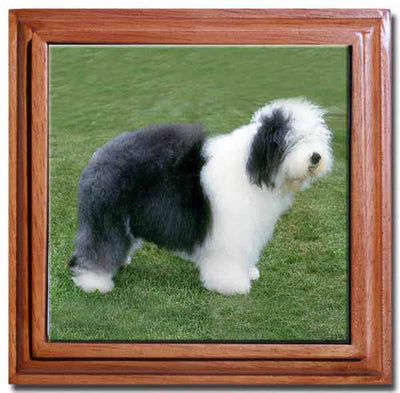Old English Sheepdog Tile Trivet