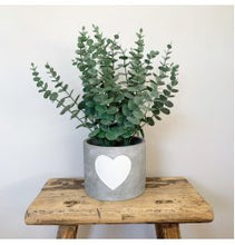 Load image into Gallery viewer, White Heart Cement Planter - 3 Sizes