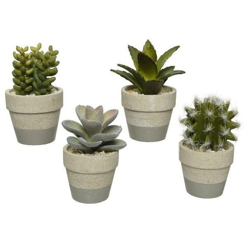 Artificial Succulents in Grey Pots