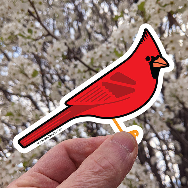 Northern Cardinal Sticker
