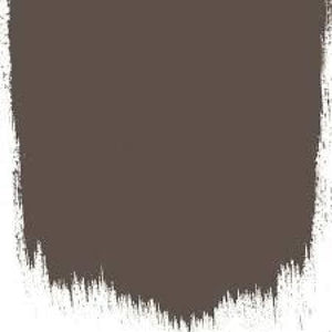 Cocoa Bean - Paint