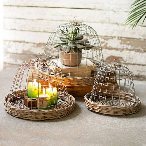 Set of 3 Wire Cloches with Wicker Base