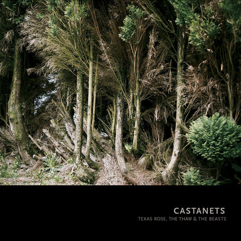 Castanets - Texas Rose, The Thaw, and The Beasts