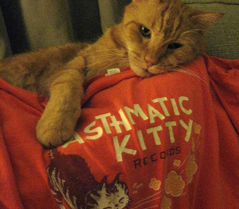 Asthmatic Kitty Records - Sneezy Kitty - T-Shirt (Orange)
