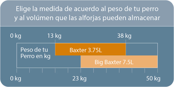 Tabla de Medidas Baxter Bag